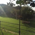 casa rural betanzos, showcooking bodas, a coruña